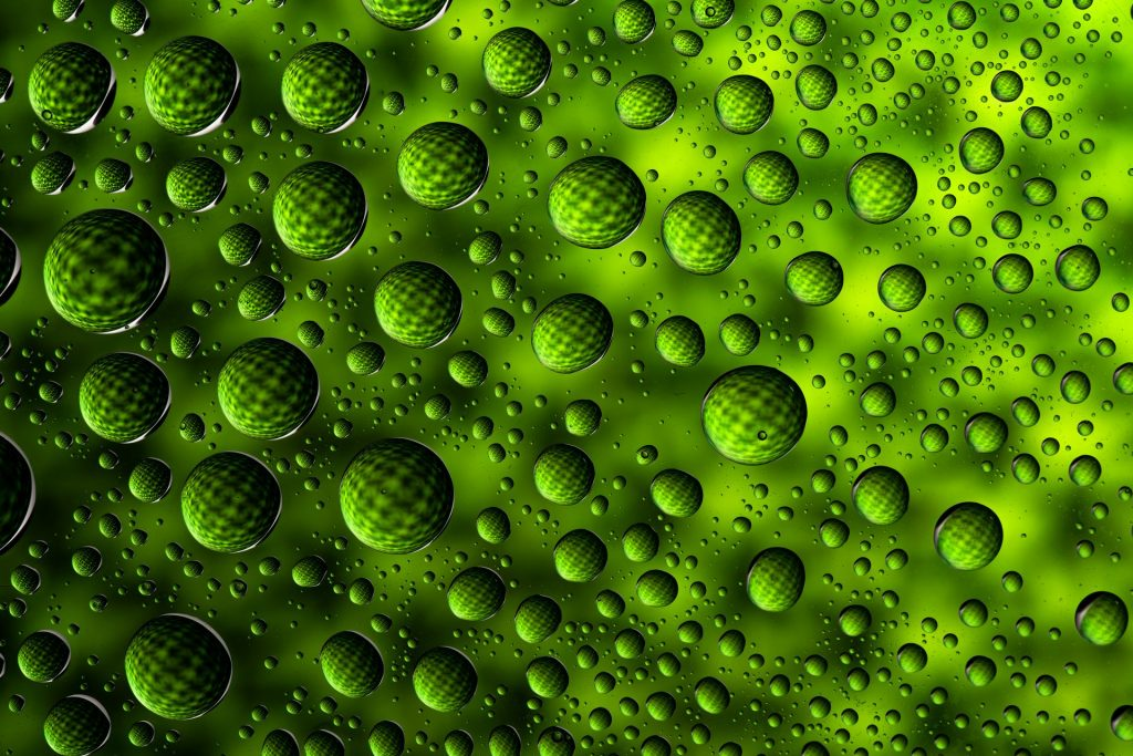 Green water drops - Picture taken in our High Speed Flash Photography course